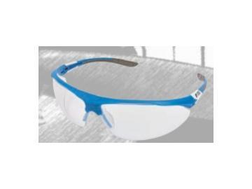 VISIONSHIELD safety glasses